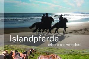Islandpferde - erleben und verstehen