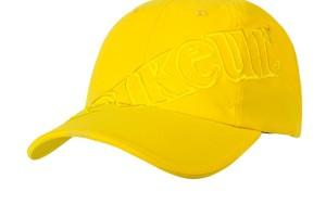 PIKEUR Logo Micro Cap